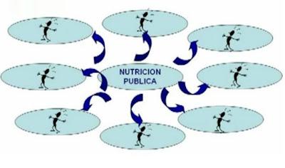 NUTRICION SALUD PUBLICA Y DIETETICA