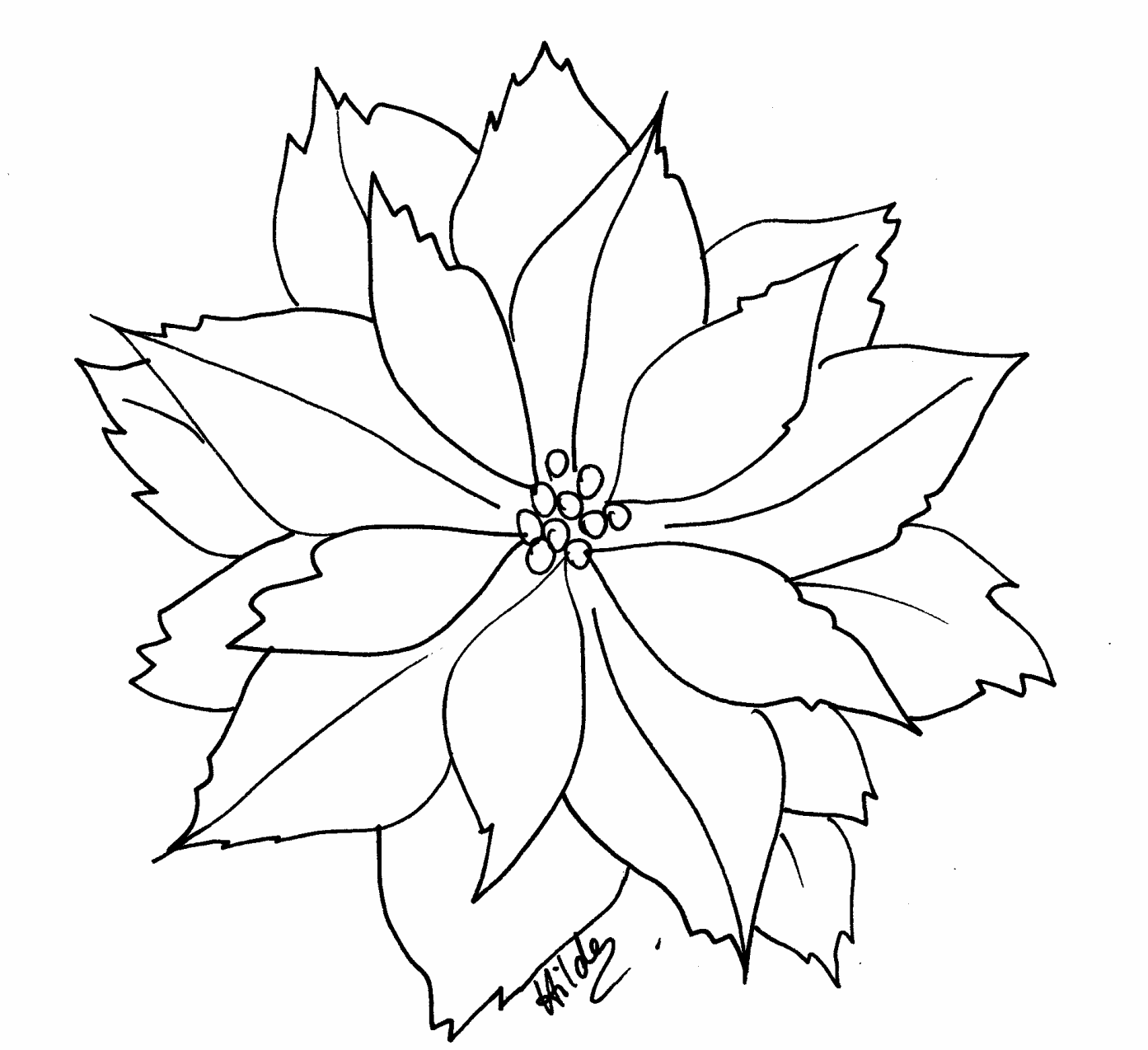 Poinsettia Clip Art Black And White | Search Results | Calendar 2015
