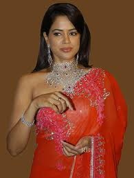 Sameera Reddy hot in saree Bollywood Actress-3