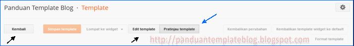 Tampilan Pratinjau Template di Menu Edit HTML Baru