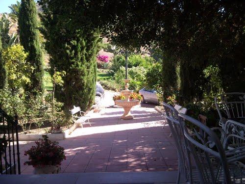 Garden center ejea sepa cuales son los errores m s - Garden center ejea ...