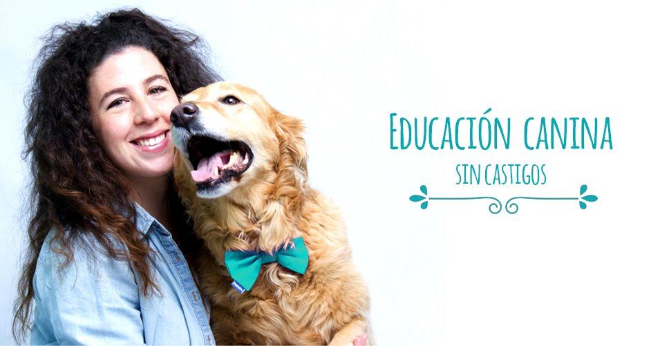 Mr.Mutt educación canina