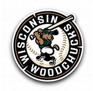 Wisconsin Woodchucks  Summer Reading Program