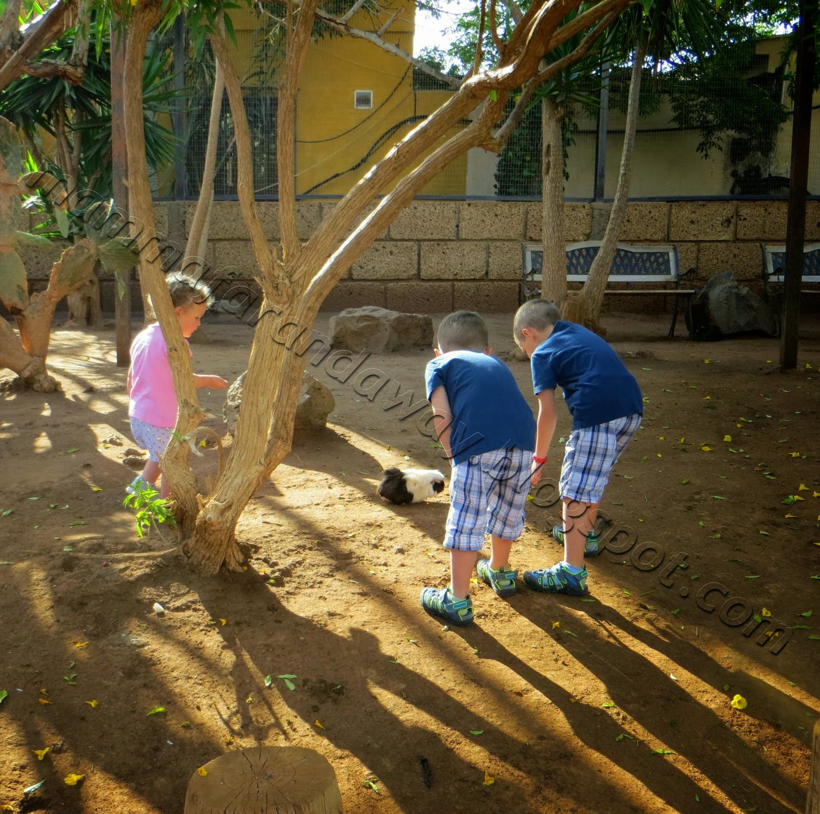 http://www.mammafarandaway.com/2015/01/100-viaggi-in-foto-da-fare-con-i-bambini.html