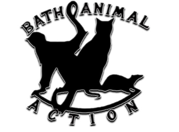 Bath Animal Action