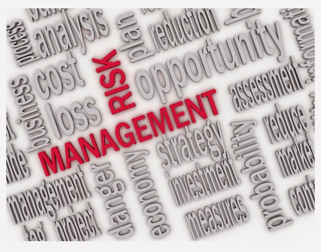 Current Issues in Medical Device Risk Management