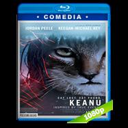 Keanu (2016) BRRip 1080p Audio Dual Latino-Ingles
