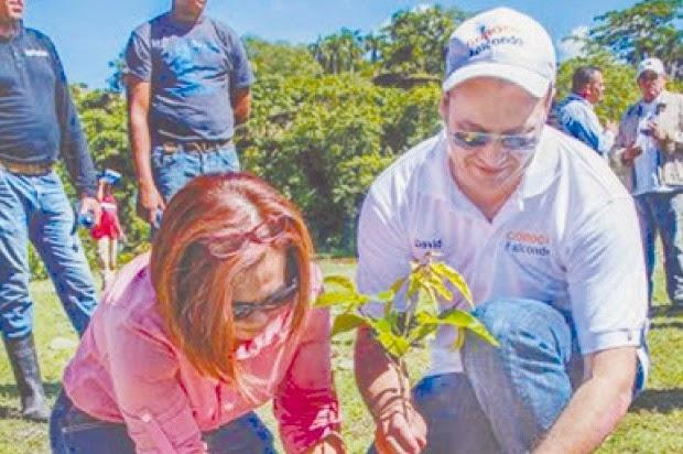 La empresa minera Falconbridge Dominicana (Falcondo), los ministerios de Medio Ambiente y Recursos Naturales y de Energía y Minas, y la Comunidad de Caribe, Bonao, sembrarán 200 mil árboles en la cuenca media del río Yuna.
