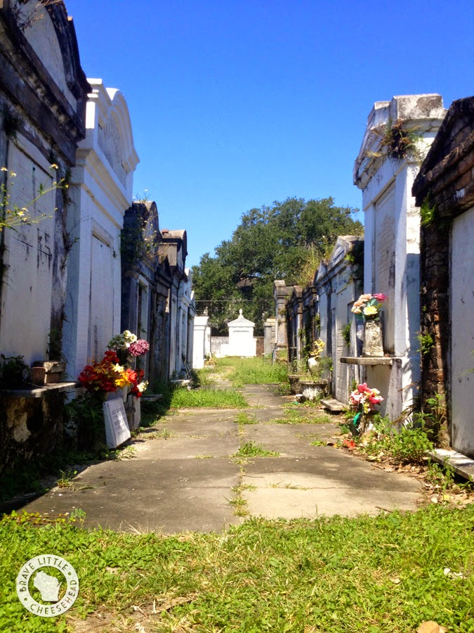 The Brave Little Cheesehead Top 6 Must Do 39 S In New Orleans