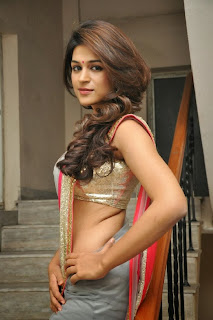 Actress Shraddha Das  Picture Gallery in Saree at Rey Movie Teaser Launch  0040.jpg