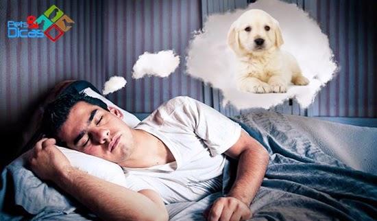 Significado de sonhar com cão