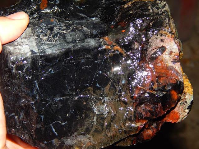 Black Panteks Sumbawa