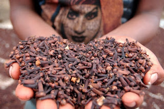 Resep Herbal Mengeluarkan Dahak
