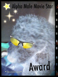 Alpha Male Movie Star Award
