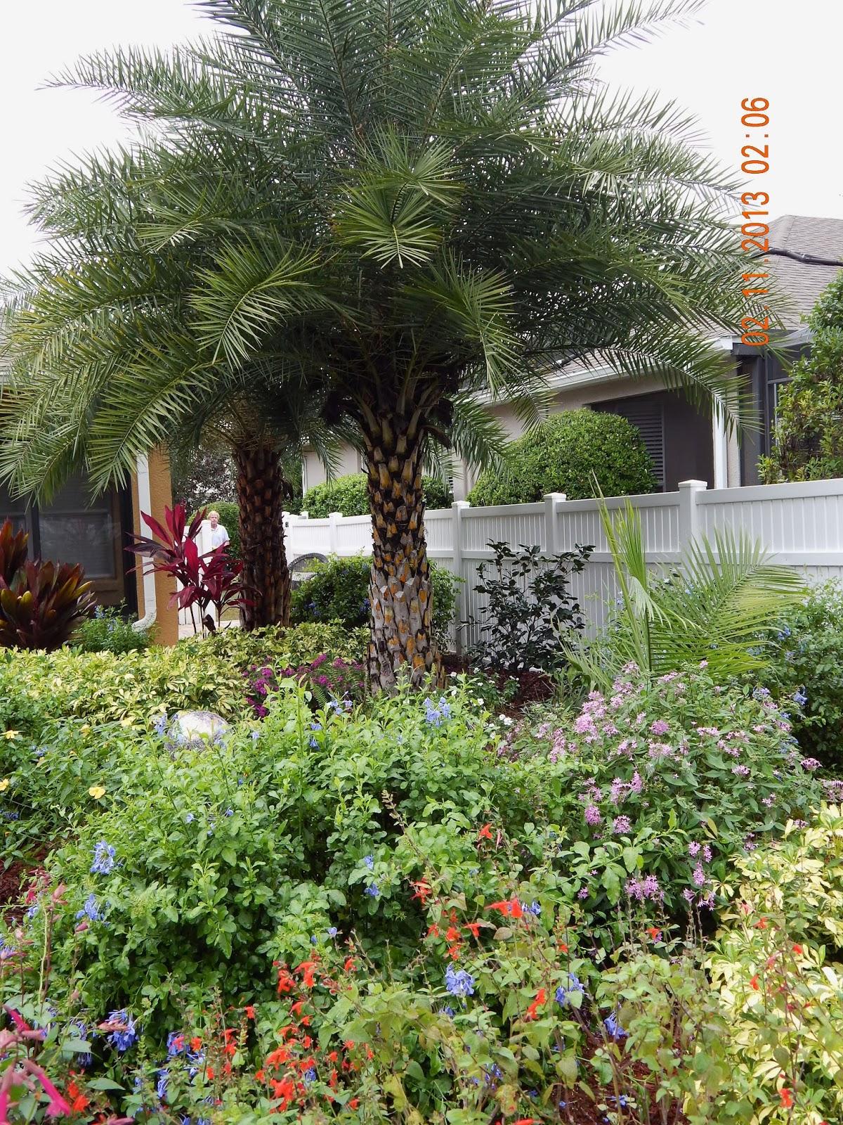 The Gardens of Mount Dora: November 2013