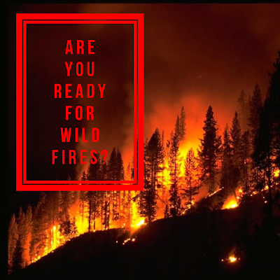 Prepping For Wild Fires