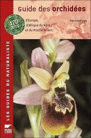 Orchid Es Sauvages De Li Les Orchid Es Dans L 39 H Rault