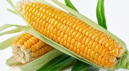 Amazing Benefits Of Corn