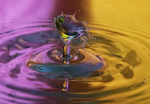 Fantastic Water Drops Photography