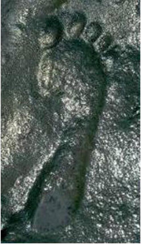 [Imagem: 1453275465_ancient-footprint.jpg]