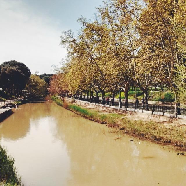 Canal Imperial de Aragón, Zaragoza