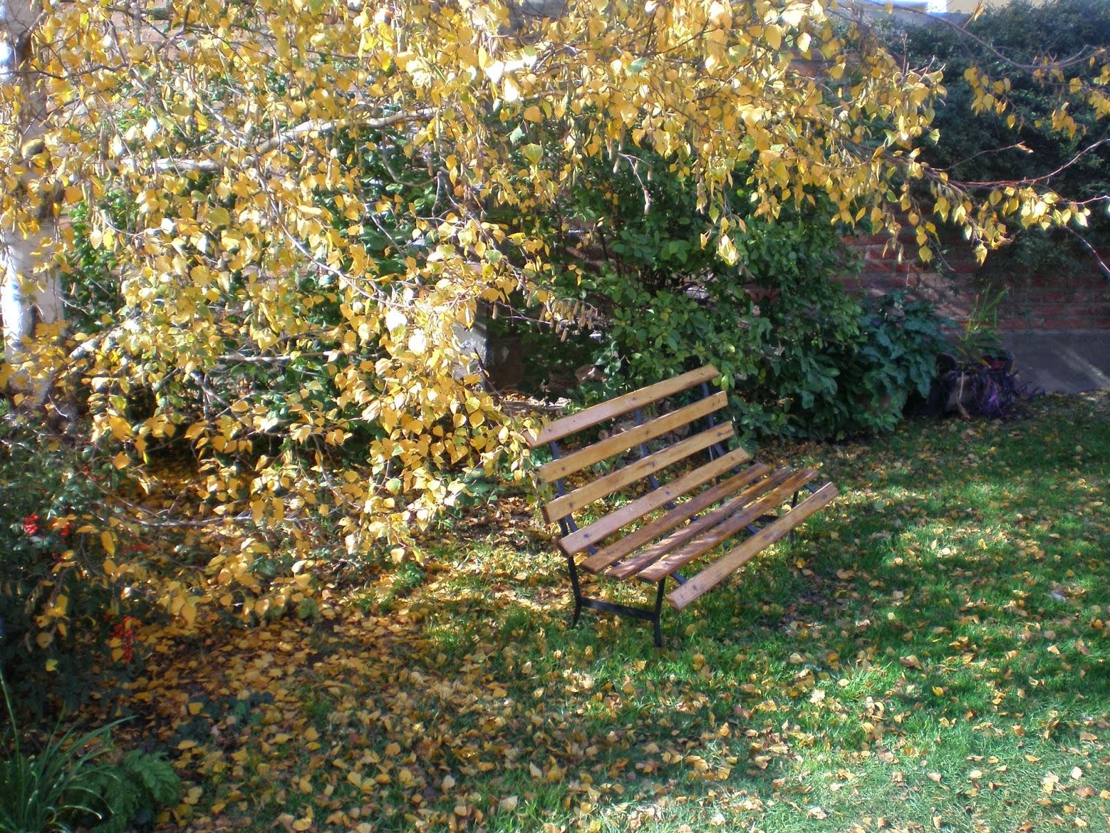 Consejos de jardineria paisajismo y huerta el jardin en - Que es paisajismo ...