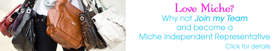 Love Miche? Join my Team and become a Miche Representative