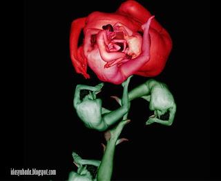 Bukan Hanya Sekadar Bunga