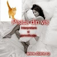 Interpretarea si semnificatia visului cu pisici