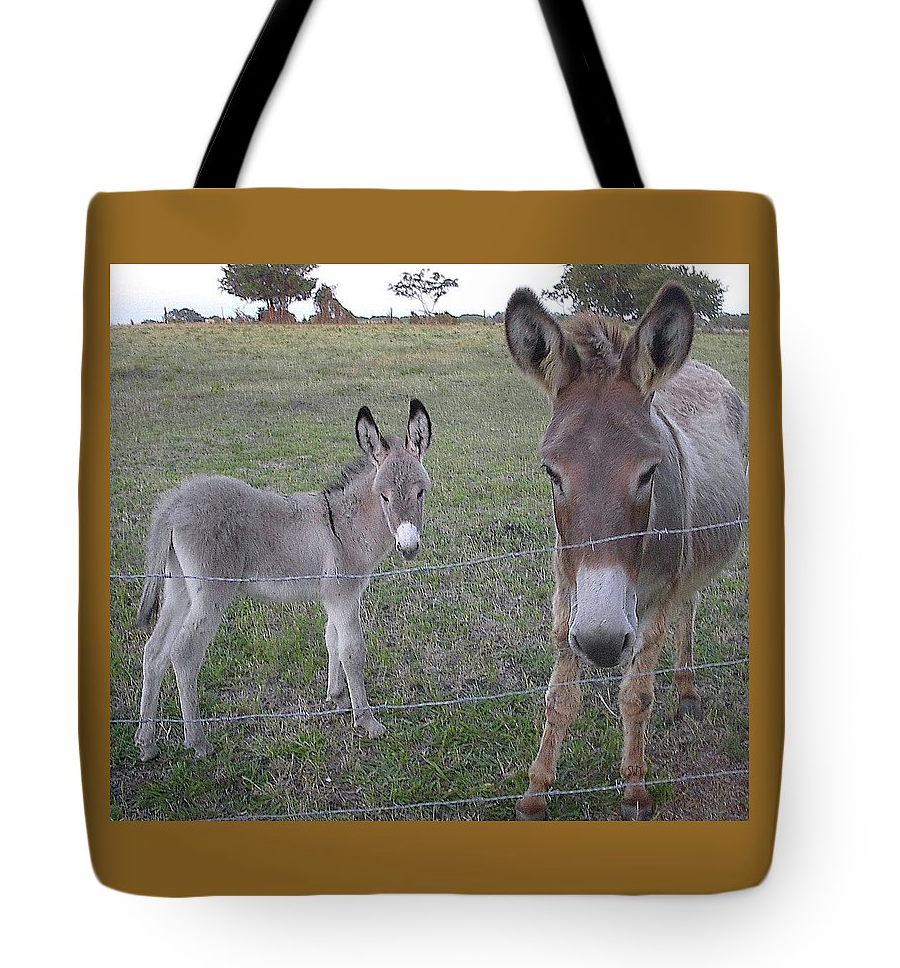 My photos on a Tote Bag