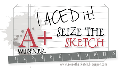 Seize the Sketch #14 Winner!