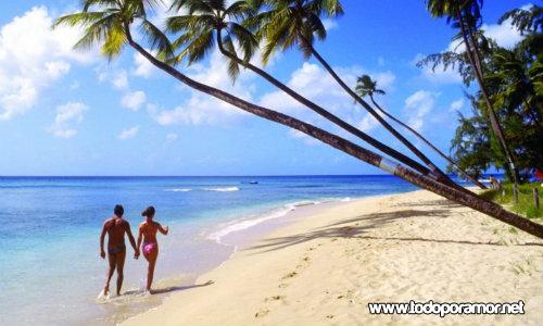 luna de miel en Barbados