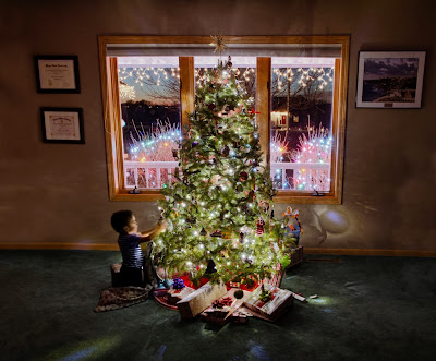 tips for photographing christmas trees