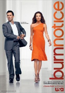 Assistir Burn Notice 6 Temporada Online Dublado e Legendado