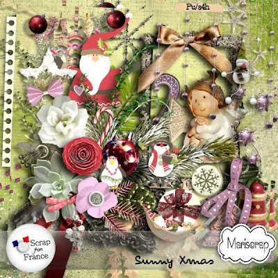 http://scrapfromfrance.fr/shop/index.php?main_page=product_info&cPath=88_91&products_id=4554