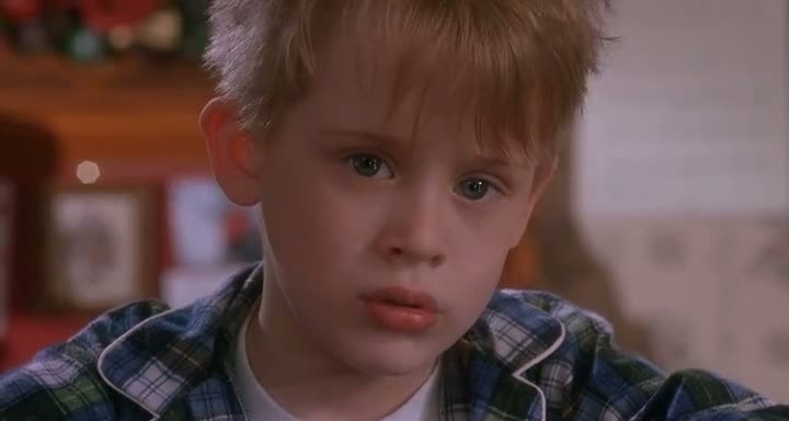 Screen Shot Of Home Alone All Parts Dual Audio Movie 300MB small Size PC Movie