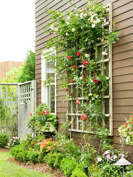 Landscaping Garden Arbors : Arbors and trellises in the landscape home appliance
