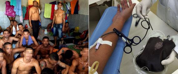 Doação de sangue para reduzir pena de preso gera polêmica