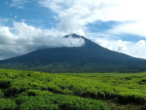 Nama Gunung Di Indonesia Beserta Tinggi Dan Letaknya  KAPSAINS