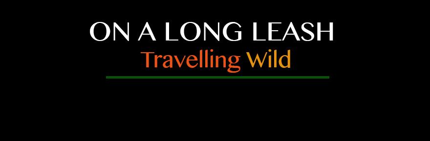 On A Long Leash