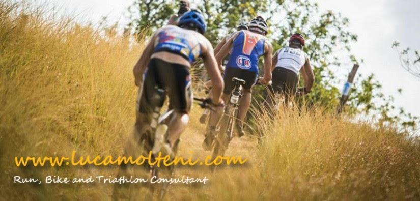 www.lucamolteni.com - Il blog