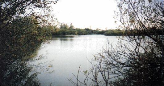 Chigboro fisheries