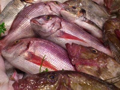Κονσερβοποίηση ψαριών σε δοχεία ή κονσέρβες