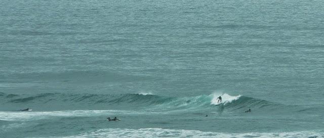 surfeando el pasillo 01