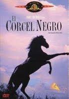 Ver El Corcel Negro 1979 Online Gratis