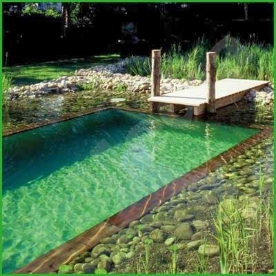 natural swimming pools. Black Bedroom Furniture Sets. Home Design Ideas