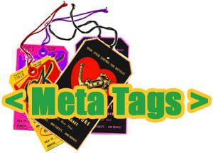 Set Up Meta Tag