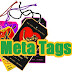 Set Up Meta Tag