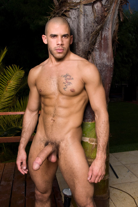 big dick male pornstars