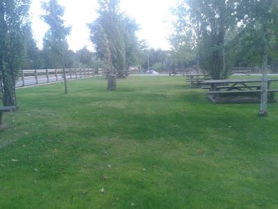 jardim verde e mesas